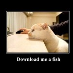 download-me-a-fish